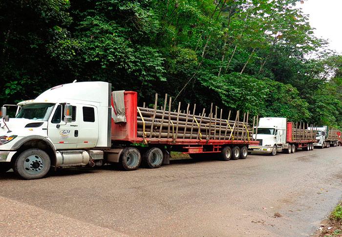 Transporte en Plataforma 1